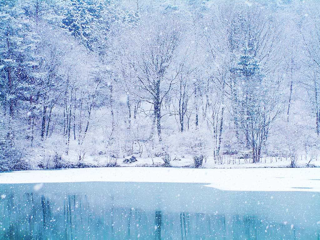 winter-scene-background-3-739931